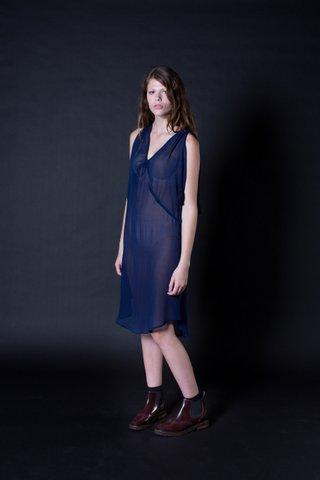 Immortal Silk Dress